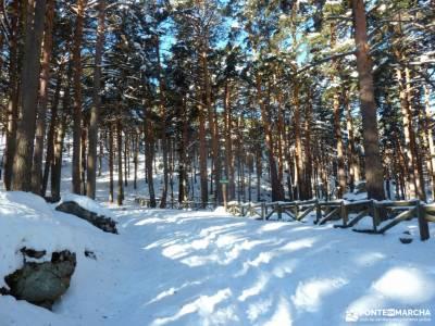 Ladera Mojonavalle-Bosques Canencia; paisajes de nieve quedadas madrid islas atlanticas